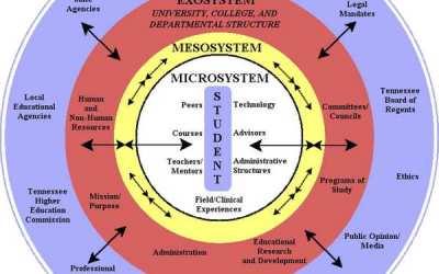 Brofenbrenner's Biological Model of Human Development